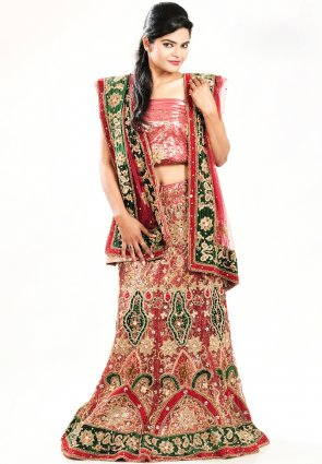 Diffusion Contemporary Salmon Chaniya Choli